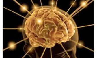 Reprogramming the Mental Patterns – Live Conference