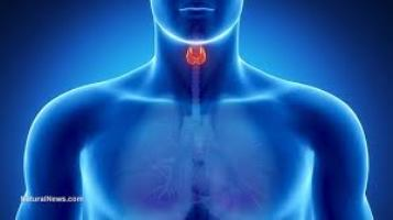 Fatigue after sleeping 8 to 10 hours a night? Check your thyroid